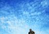 中山纪念堂青砖蓝瓦,是一座八角形建筑,位于广州近代城市中轴线上,是中国传统建筑风格与西方建筑结构完美结合的典范